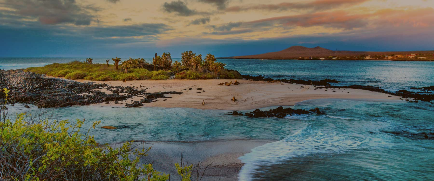 Galapagos island panoramic view