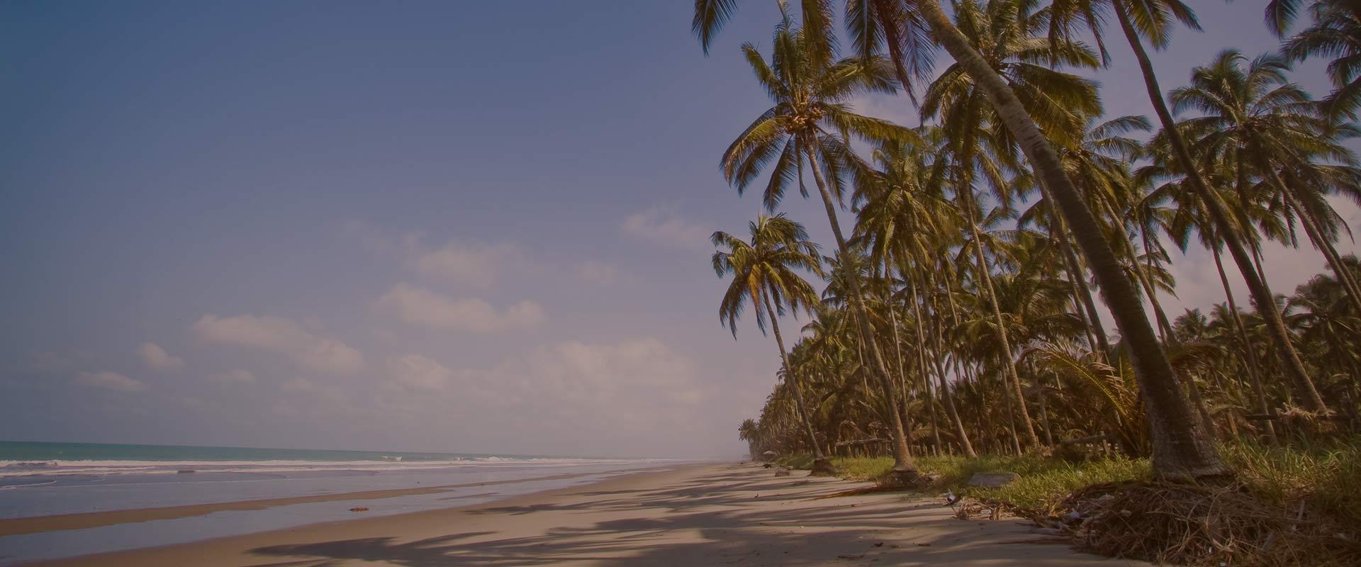 Cojimies ecuadorian beach paralax panoramic