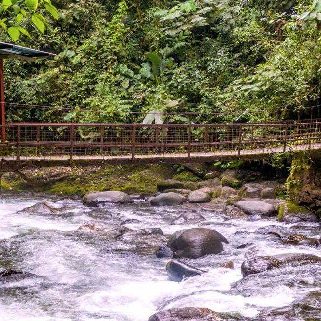 Mindo forest near Quito - Adventure 2019