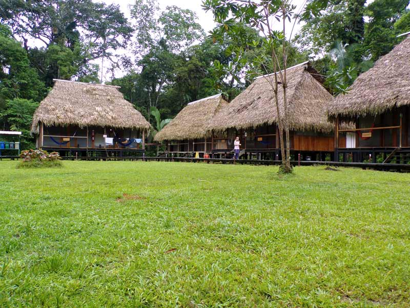 Nicky amazon lodge huts