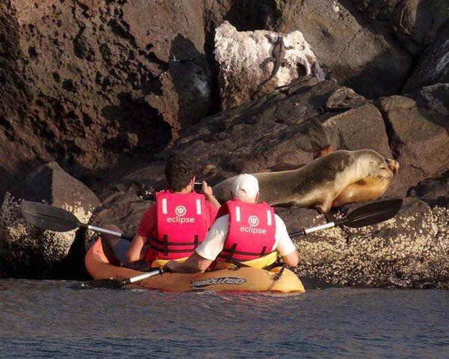 kayaking inn galapagos with experience cruise 2019