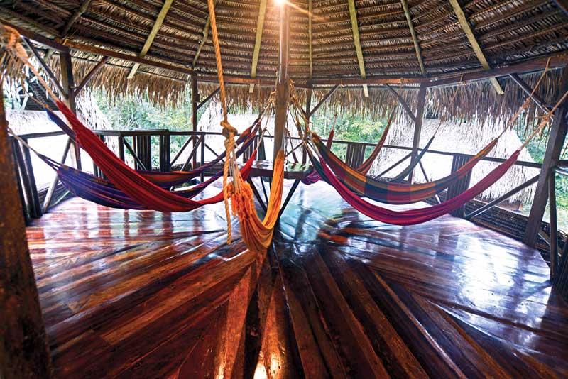 hammocks relax in ecuadorian amazon 2019
