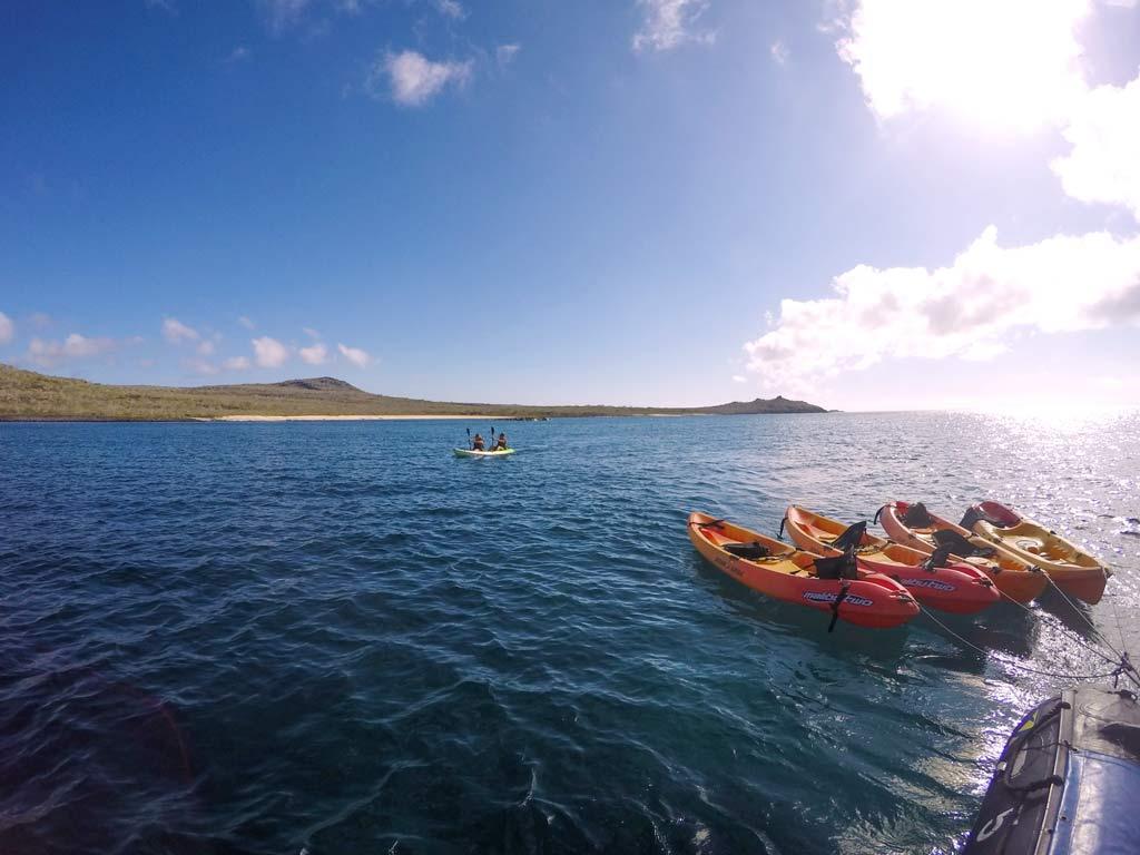 kayaking activity at santa cruise ii cruise galapagos