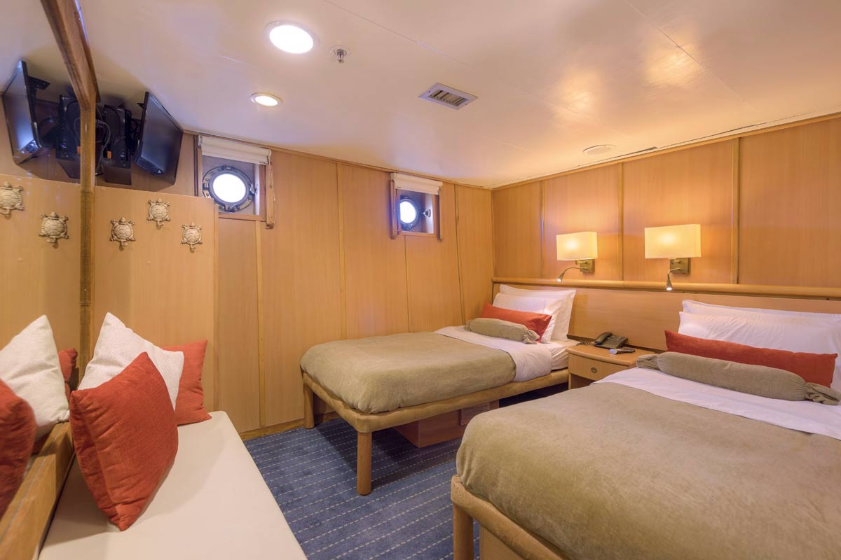 Standard plus cabin at galapagos legend