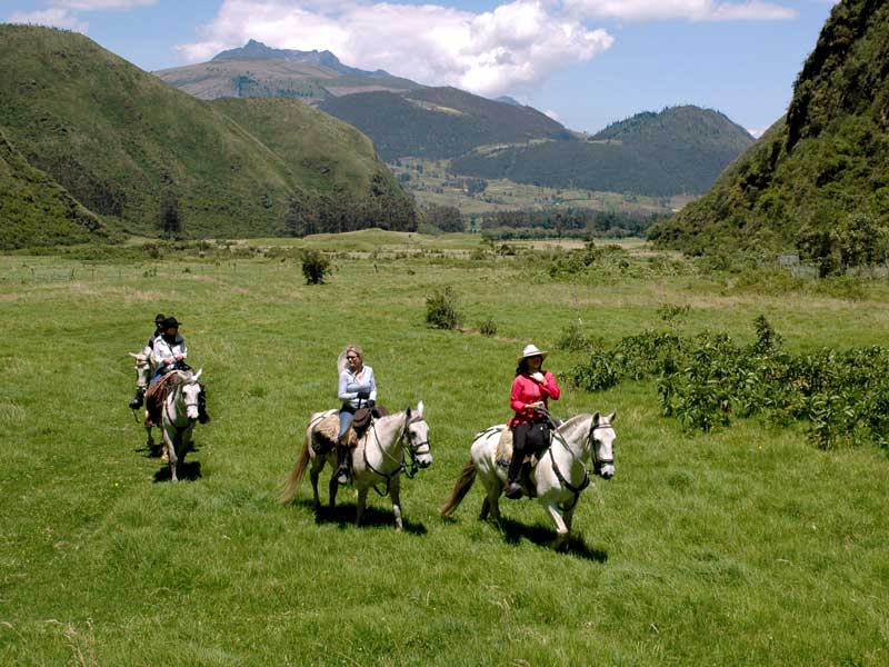 Horse Riding in Pululahua 2019