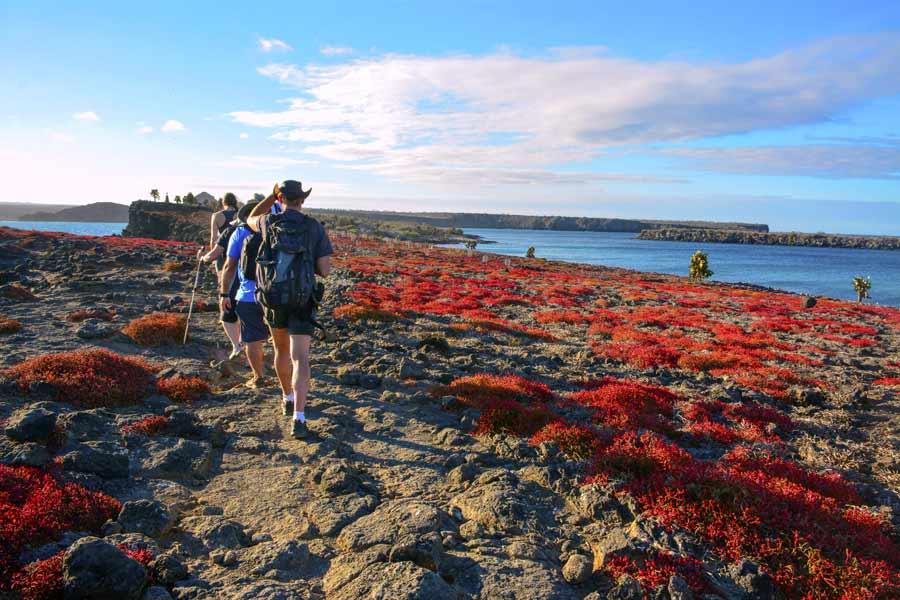 Walk tour in Galapagos 2019