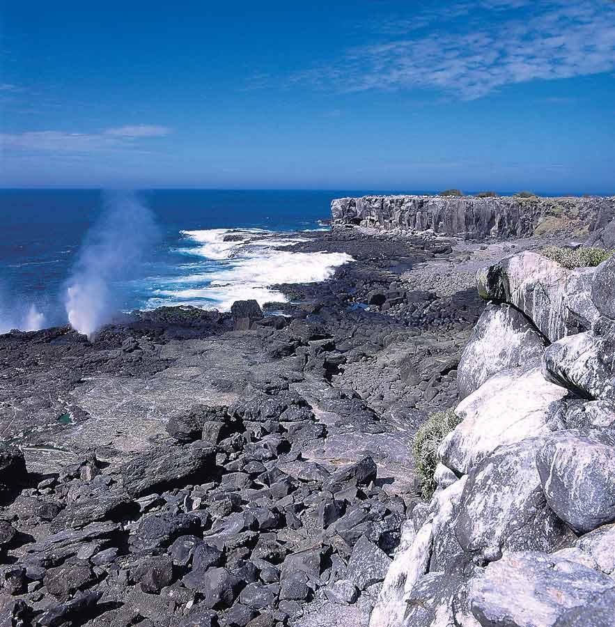 Espanola island in galapagos