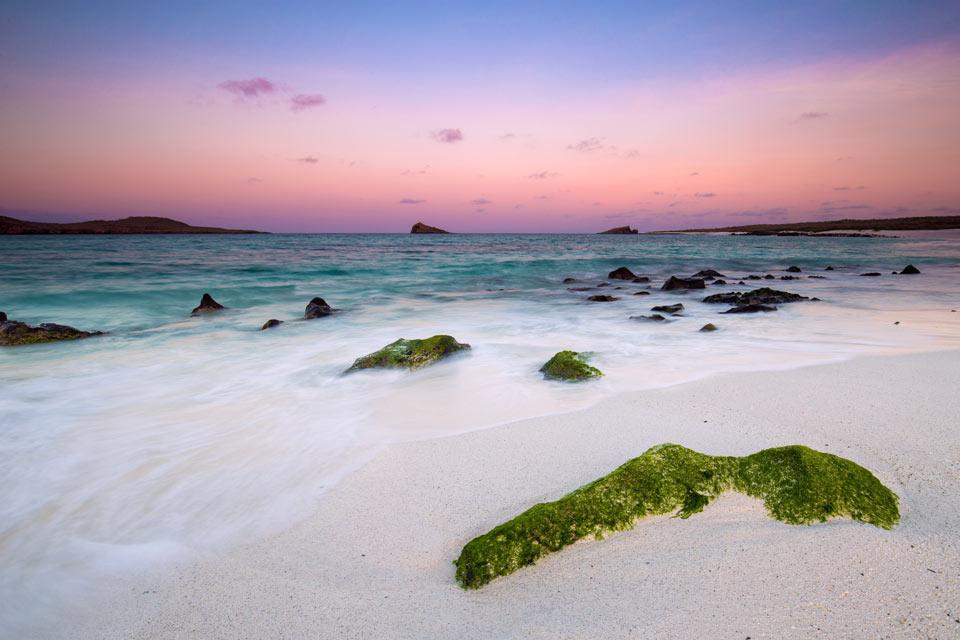 beautiful beach in the galapagos islands