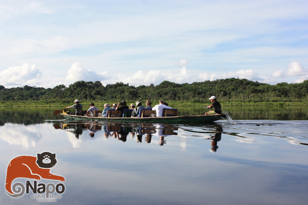 canoeing activity in napo rainforest