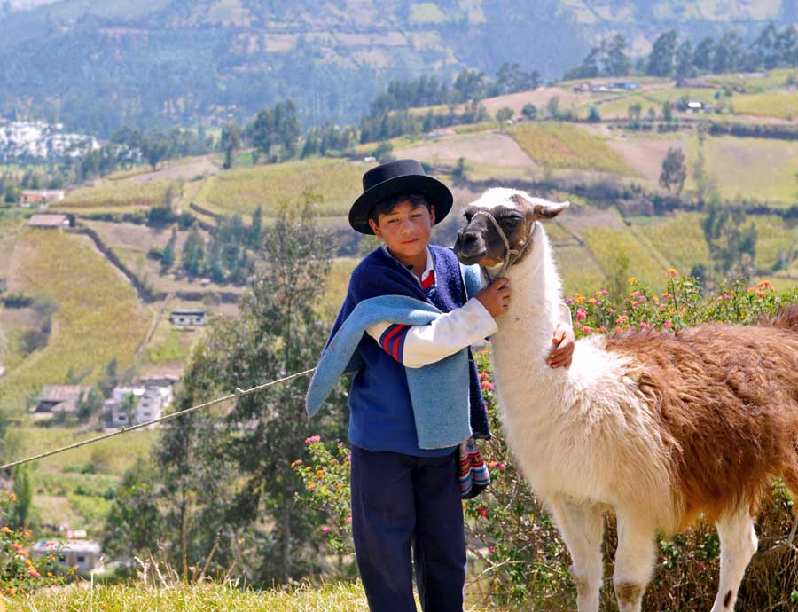 Native american ecuadorian kid with a llama