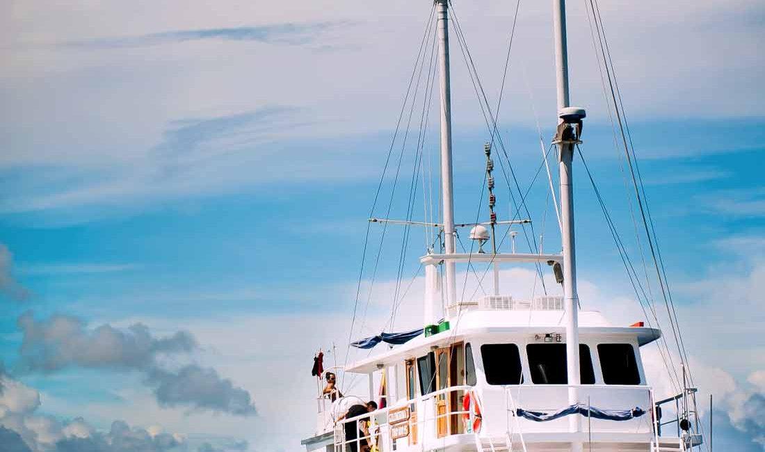 golondrina cruise frontal pic