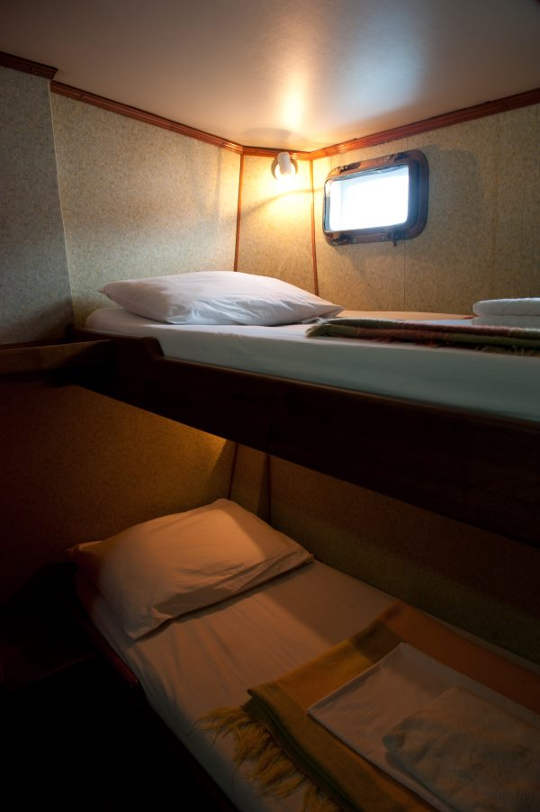 Bunk bed at tourist class cruise galapagos