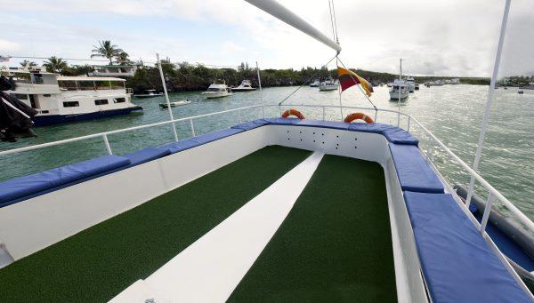 rear view of golondrina cruise